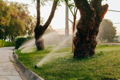 Sprinkler System Tacoma WA