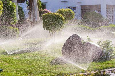 Tacoma Sprinklers